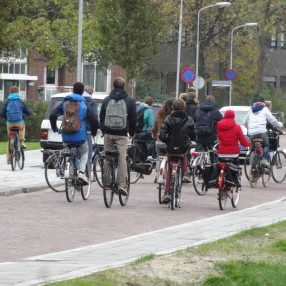 D66 maakt zich zorgen om verkeersveiligheid bij scholen